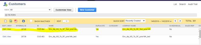 Creating new customer in NetSuite screen