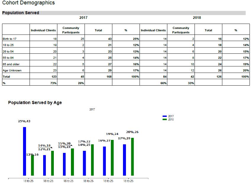 Example Demographics Report in Azure